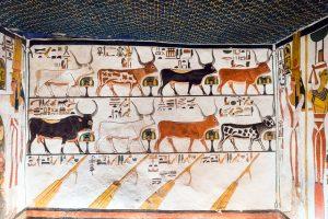 Een verloren paradijs in Egypte? @ Amersfoort